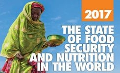 2017 State of Food Security & Nutrition in the World