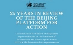 Beijing Platform for Action - 25 Years in Review