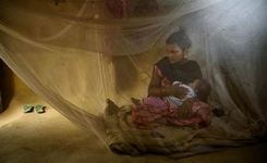 Child Marriage - Fragile Progress in Global Fight - While Percentage of Girls Marrying Drops, Overall Numbers Climb Higher