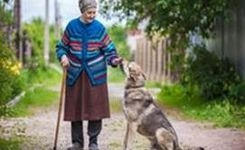 EU - Why Older European Women Are Much More Exposed to the Risk of Poverty than Older Men