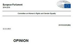European Parliament Committee on Women's Rights & Gender Equality - Important Comprehensive Gender-Focused Document for Report on Human Rights & Democracy