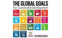 Global goals for sustainable development - Gender