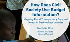 How does civil society use budget information?