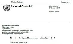 Integrating a Gender Perspective in the Right to Food - UN Special Rapporteur on Food Report