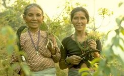 International Day of Rural Women: Empowering Women to Transform Rural Areas
