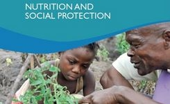 Nutrition & Social Protection - The Many Dimensions of Nutrition - Gender