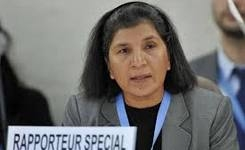 Special Rapporteur on violence against women report to the un Human Rights Council 2014