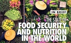 State of Food Security & Nutrition in the World 2020 - Hunger & Malnutrition