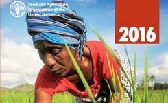 State of Food & Agriculture 2016 - Climate Change, Agriculture & Food Security - FAO