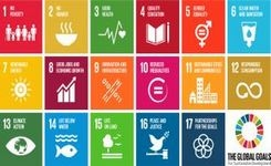 UNDEF Update: Sustainable Development Goals, Day of Democracy and more