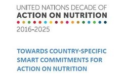 United Nations Decade of Action on Nutrition 2016-2025- Women, Girls, & Nutrition