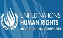UN experts launch ground-breaking guidance on access to justice for people with disabilities
