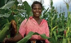 Women's empowerment in agriculture index report 2014