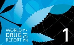 World Drug Report 2017 - UNODC - Gender