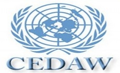 CEDAW Committee Elects New Members to Fill Vacancies