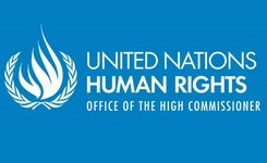 United Nations Human Rights Office launches major online database of treaty body case law