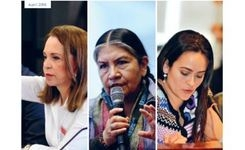 Assessing Women's Inclusion & Influence on Peace Negotiations - Making Women Count: Not Just Counting Women