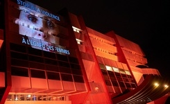 """Council of Europe turns """"orange"""" to end violence against women"""