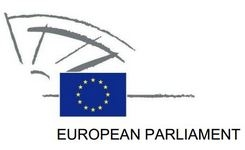 Declaration Submitted on Establishing a European Year on Combating Violence Against Women