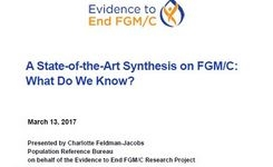Evidence to End FGM/C - A State-of-the-Art Synthesis on FGM/C: What Do We Know? - Power Point