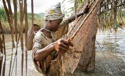 Financing: Why It Matters for Women & Girls