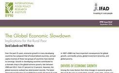 Global Economic Slowdown - Implications for the Rural Poor - Rural Women