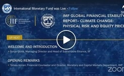 Global Financial Stability Report: Markets in the Time of COVID-19