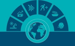 Global Food Crises Report 2020