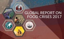 Global Report on Food Crises 2017 - Gender