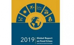 Global Report on Food Crises 2019 - Acute Food Insecurity - Gender