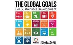 Global goals for sustainable development - Gender