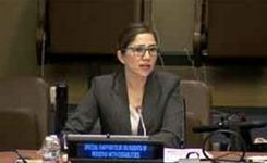 UN Special Rapporteur on the Rights of Persons with Disabilities