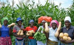 Women Small-Holder Farmers Are Key Drivers for Sustainable Production