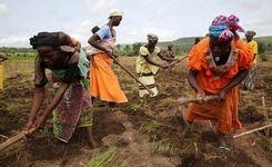 Women Worldwide Live Longer, Healthier Lives with Better Education – UN Report