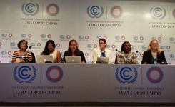 Women & climate change – Challenges at negotiations to push for gender equity at cop20