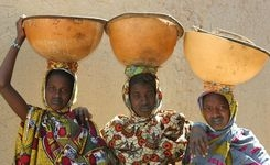 Working Towards an End to FGM