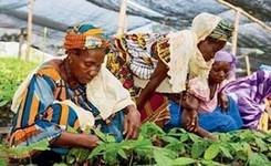 Eliminate Legal Discrimination Against Women to Advance Food Security & Nutrition