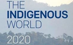 The Indigenous World 2020 - Report