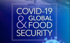 COVID-19 & Global Food Security - Gender