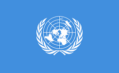 FGM Resolution of UN Human Rights Council - July 2020