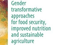 Gender Transformative Approaches for Food Security, Improved Nutrition, & Sustainable Agriculture