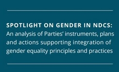 Integration of Gender Equality Principles & Practices in National Climate Change Actions - Study of 196 Countries